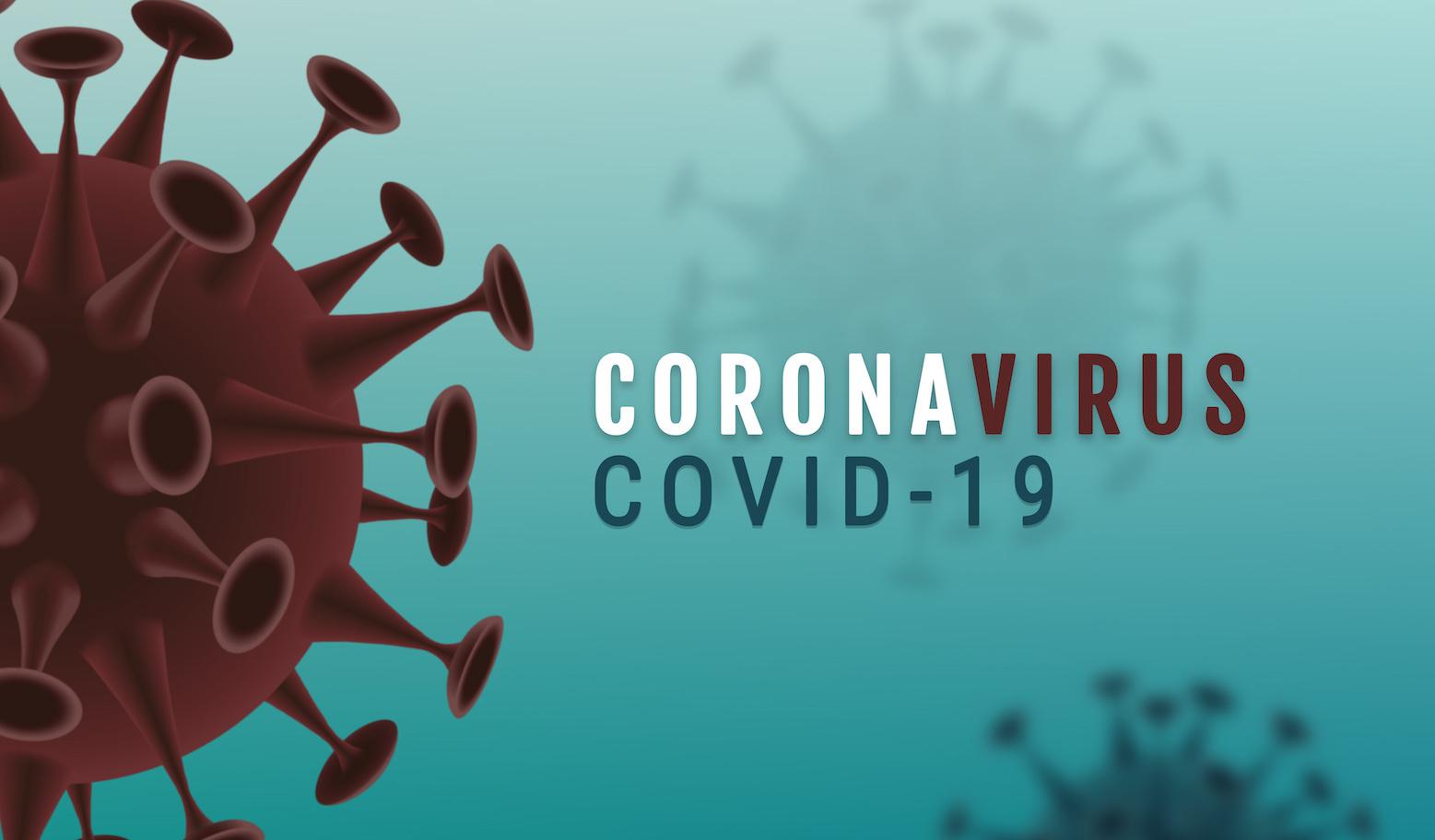 Cellules de coronavirus